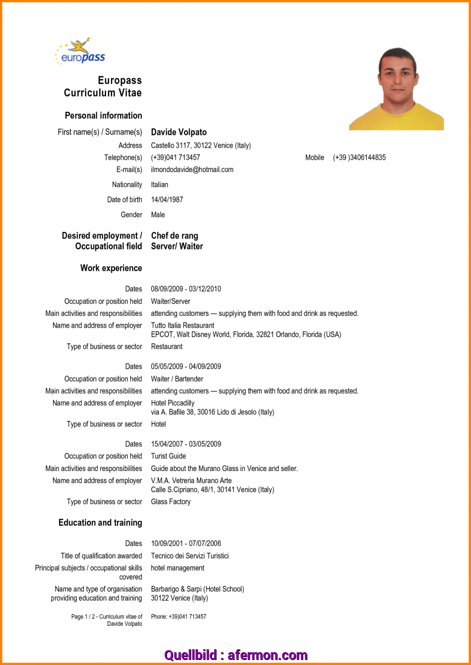Komplex 7 43 Download Cv Model English Instinctual Intelligence