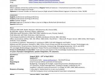 Detail TOSSANI CV 2015 ENGLISH RESUME