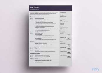 Primär One-Page Resume Templates: 15 Examples To Download, Use Now