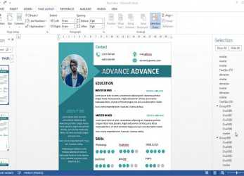 Briliant CV/Resume 2 Pages With Microsoft Word Free DOC+PDF
