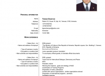 Briliant Europass Cv English Example, Cv Examples Europass English Cv Template