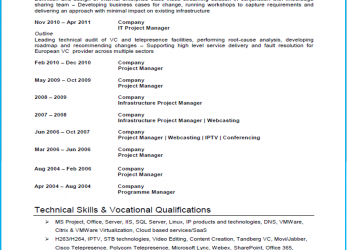 Praktisch Project Manager CV Example, Template, Writing Guide)