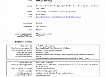 Prämie ... Large Size Of Cv Model Europass Romana Format Download English Word Letter Examples