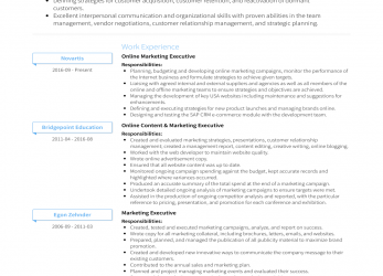 Komplett Online Marketing Executive, Resume Samples & Templates, VisualCV